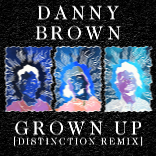 Danny Brown - Grown Up [Distinction Remix]
