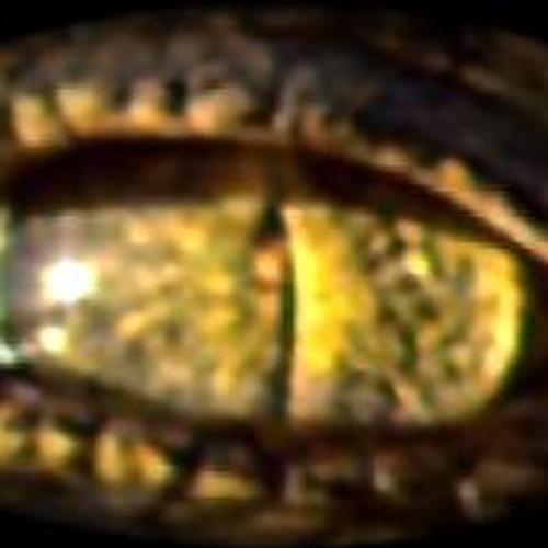 ΤΡΑΓΟΥΔΟΣΑΥΡΟΣ~CANTASAURUS~唱歌的蜥蜴 - I Who have Nothing