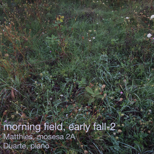Morning field, early fall-2 (Matthies, mosesa 2A, Duarte, piano)