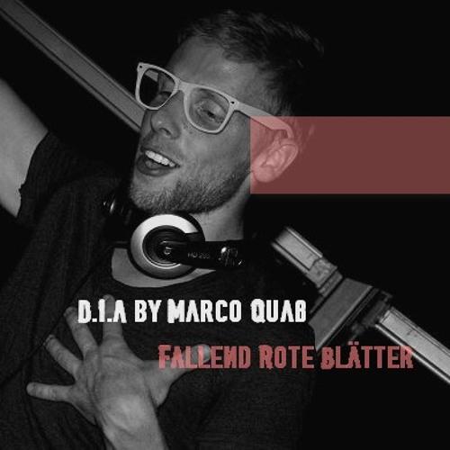 D.I.A [Plattenpussys] by Marco Quaß - Fallend Rote Blätter Part 2 [Jagdauf]