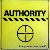 The Pain - Authority