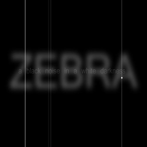 ZebraSyndicate - A Black Noise In A White Darkness... 2012