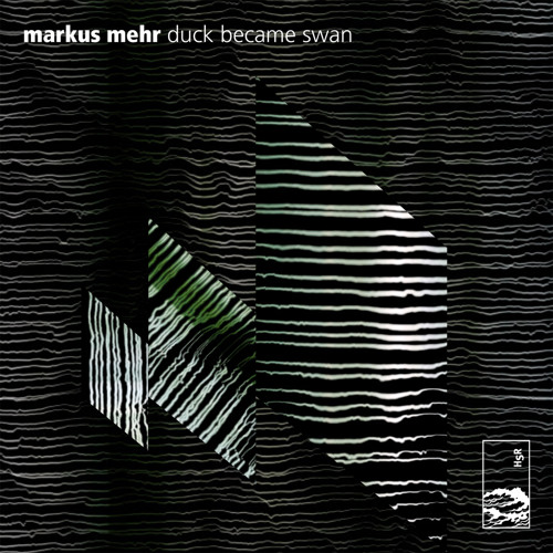 Markus Mehr - 'Duck Became Swan'