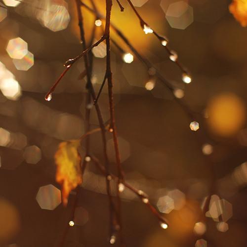 Autumn's Soulful Vibe  (Mix Set 25)