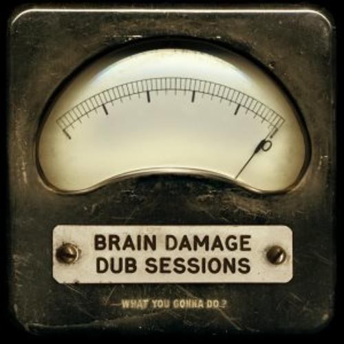 "Brain Damage Dub Sessions w/ Brother Culture : ""Radical plan"""