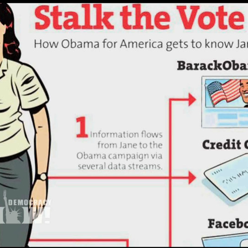 Vote Stalkers: Obama, Romney Campaigns Mine Trove of Voters' Online Data to Win '12 Election