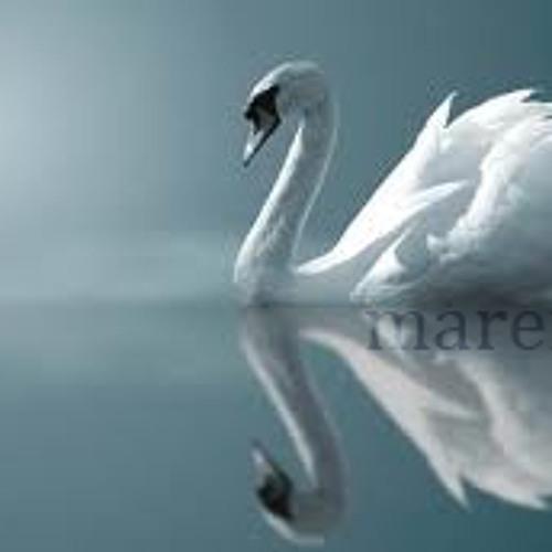 Swansong Challenge [An Ode to Maren]