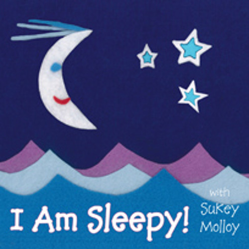 The Moon Shines Down by Sukey Molloy