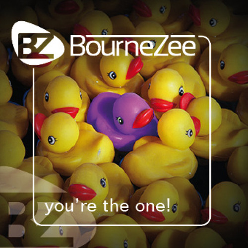 BourneZee - You're the one (BourneZee Break Beat mix)