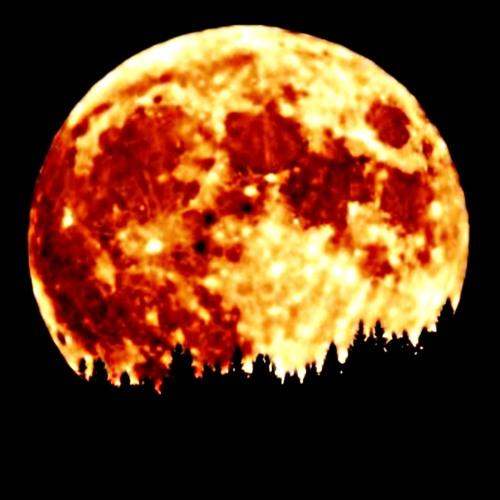 Moonburn