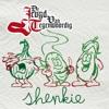 De Jeugd van Tegenwoordig  - Shenkie mp3