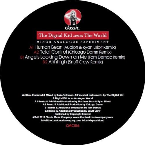 Total Control (Chicago Damn Remix)