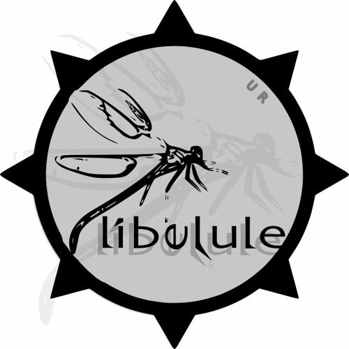 Libelule feat mister Pio - Bienvenue dans le cosmos