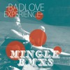 Bad Love Experience - The Princess And The Stable Boy (MINGLE Remix)