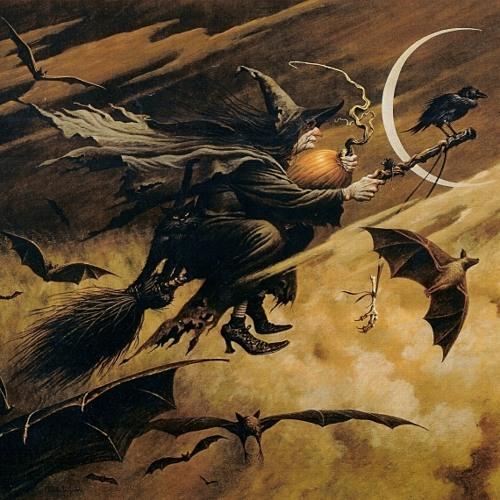 We Fly the Dark Skies (Bats & Brooms)