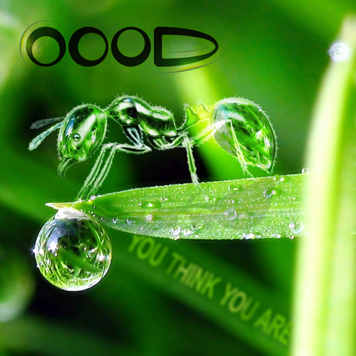 OOOD: 'You Think You Are' - ** OUT NOW ** [PREVIEW CLIPS]