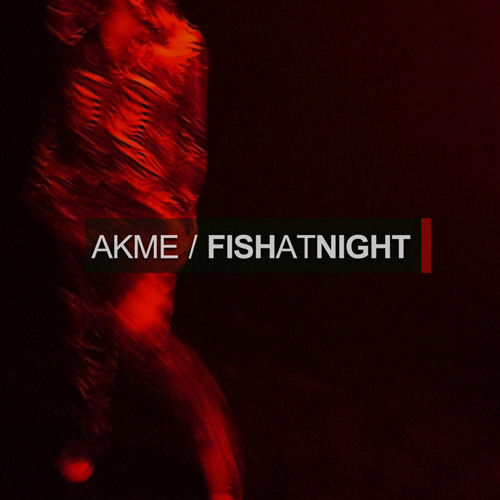 Akme - The Time Is Now [Fish At Night EP] RSPDIGI123