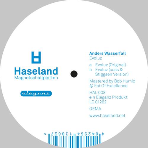 "Evoluz - Haseland Magnetschallplatten 12"""