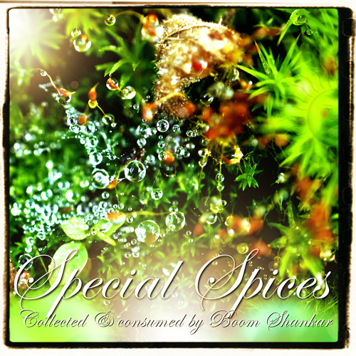 Special Spices - Collected by Boom Shankar (BMSS Records 2012)