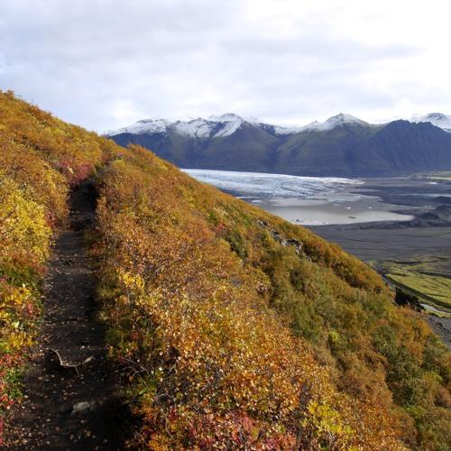 Öræfavísur ( Icelandic cover song  )
