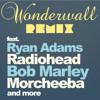 Wonderwall (Inspired Flight REMIX)