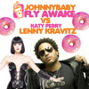 Johnnybaby: Kravitz Vs Perry - Fly Awake