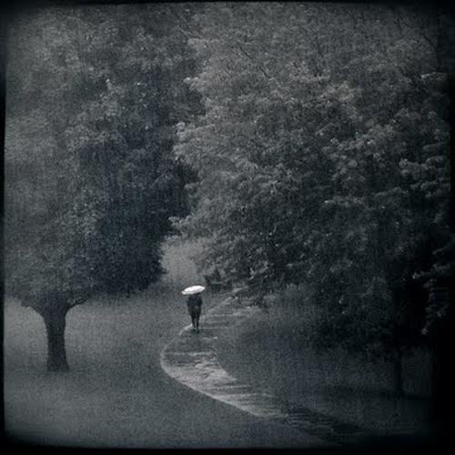 Christoph.Geisler - Regen