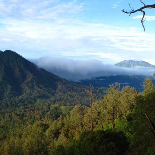 Dawn Chorus - Ijen Plateau, Java, Indonesia