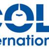 International colt