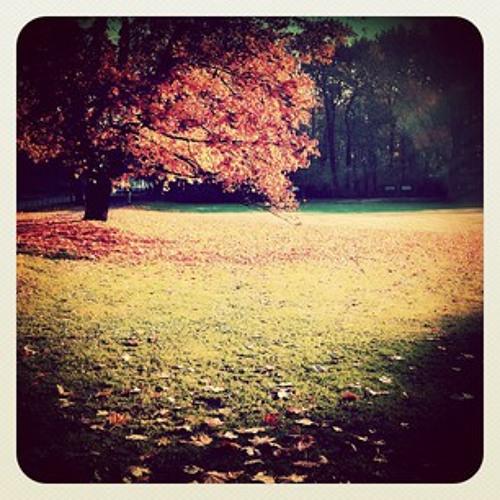 ∆PPLE PIE (Fall 2012)