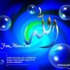 Allaho Akbar Allaho Akbar Pashto Naat by Hafiz Sohail Ahmad