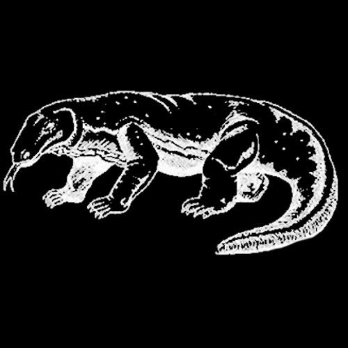 Dubalizer e Dragões de Komodo - Quem conhece tá ligado (remix)