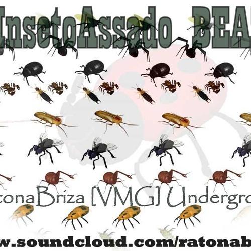InsetoAssado RatonaBriza