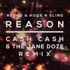 Nervo & Hook N Sling - Reason (Cash Cash & The Jane Doze Remix)