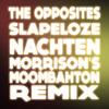 The opposites - Slapeloze nachten (Morrison's Moombahton Remix) PRESS BUY FOR FREE DOWNLOAD! mp3
