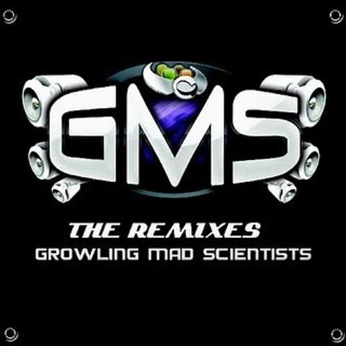 GMS - Tudo Mundo (Sonic Tone Rmx)