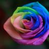 Over the Rainbow (Eva Cassidy)