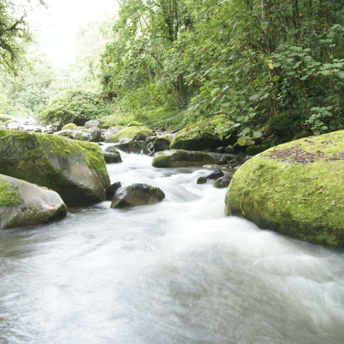 Soothing sound of water flowing - (Free Download)
