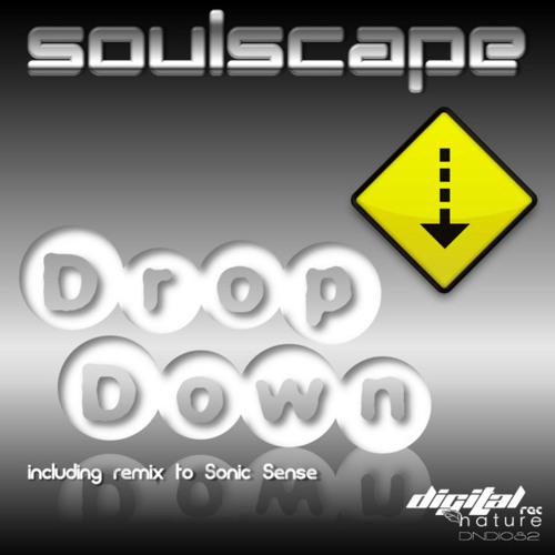 Soulscape - Flow (DNDI082)
