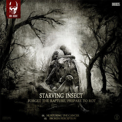 Starving Insect - Broken Perception (Preview)