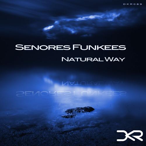 Senores Funkees - Windy ( Original Mix ) [Digital Killers Records]