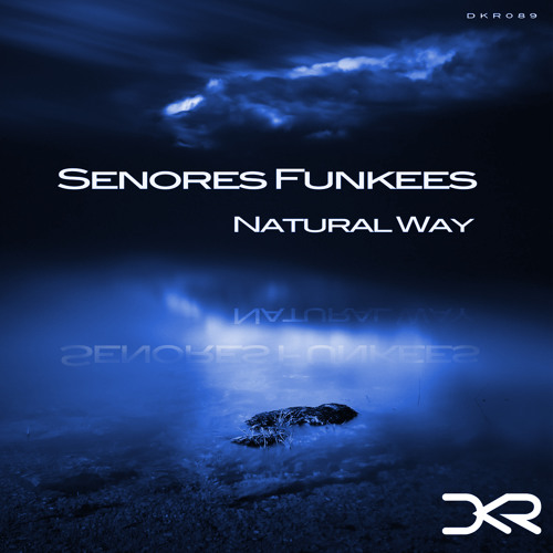 Senores Funkees - Ballad ( Original Mix ) [Digital Killers Records]