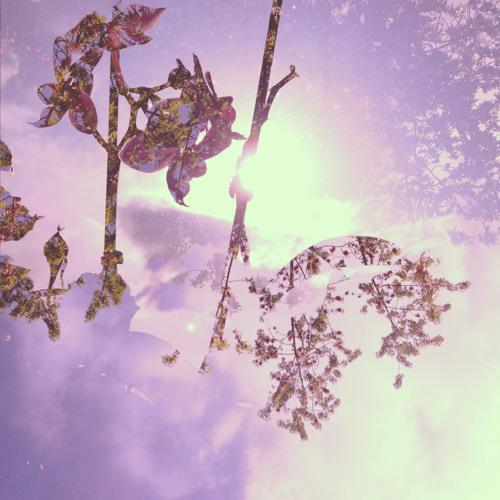 Prisme - Balade Podcast #21