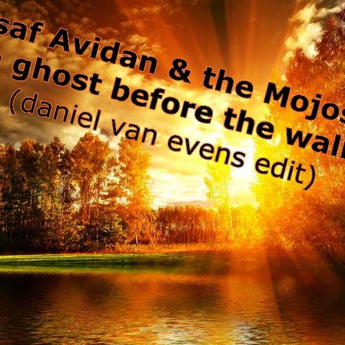 Asaf Avidan & the mojos - a ghost before the wall (daniel van evens edit)