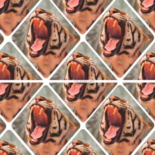 Don Kai - Tigers [Prod. by Freebase]