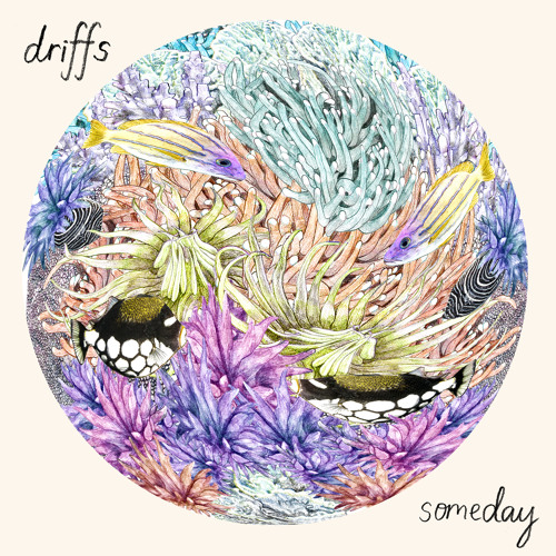 Driffs - Someday