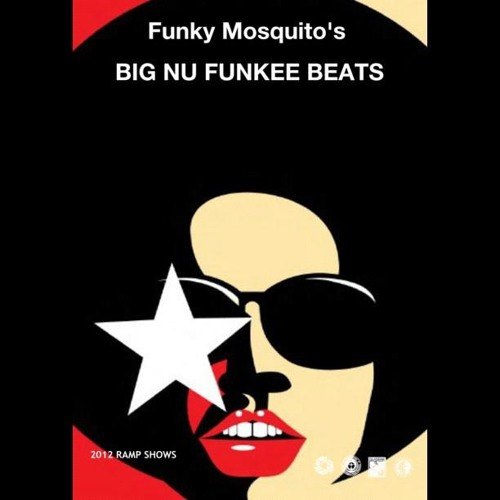 Funky Mosquito Big Nu Funkee Beats Fourteen (World Wide Funk - Ramp Shows)