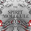 San-Kari - The Spirit Molecule (D.M.T) - (Demo-W.I.P)