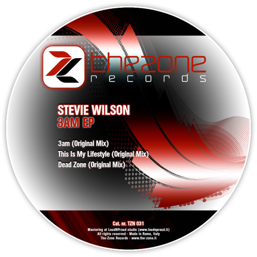 TZN031 - STEVIE WILSON - 3Am EP (Preview)