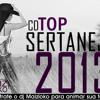 10 - Top Sertanejo 2013